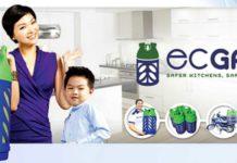ec-gas-2_opt