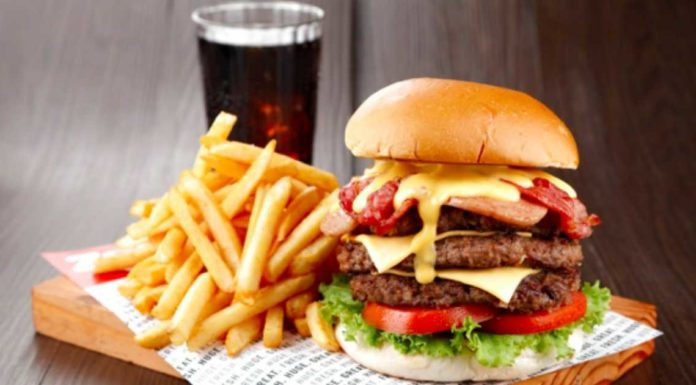 zarks-burger_opt