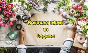 business ideas laguna