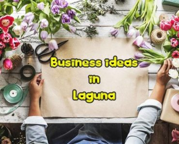 business ideas laguna