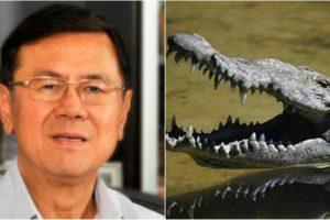 pinoy-supply-crocodile-leather