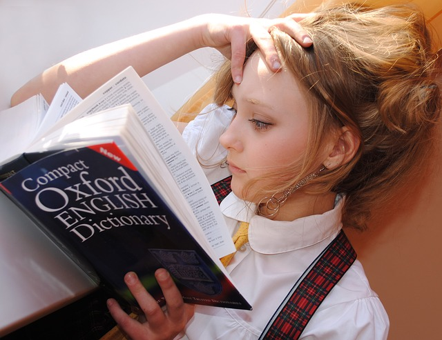 reading a dictionary