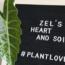 Zel's Heart and Soil