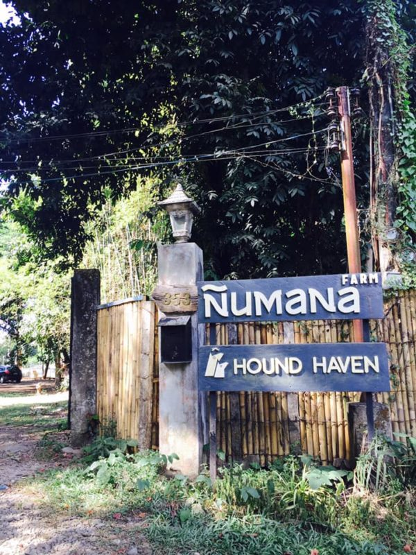 Numaña Farm